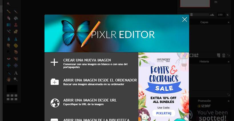 Interior del programa de diseño gráfico Pixlr Editor
